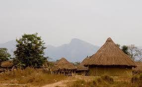 move_to_guinea